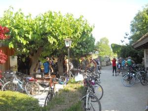 Bike experience Hotel Willy Friuli Venezia Giulia